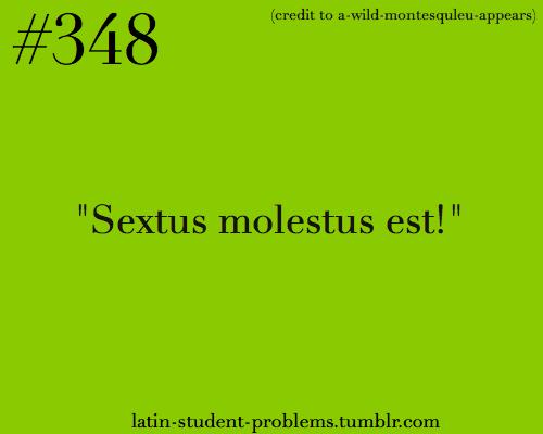 Ecce Romani Memes