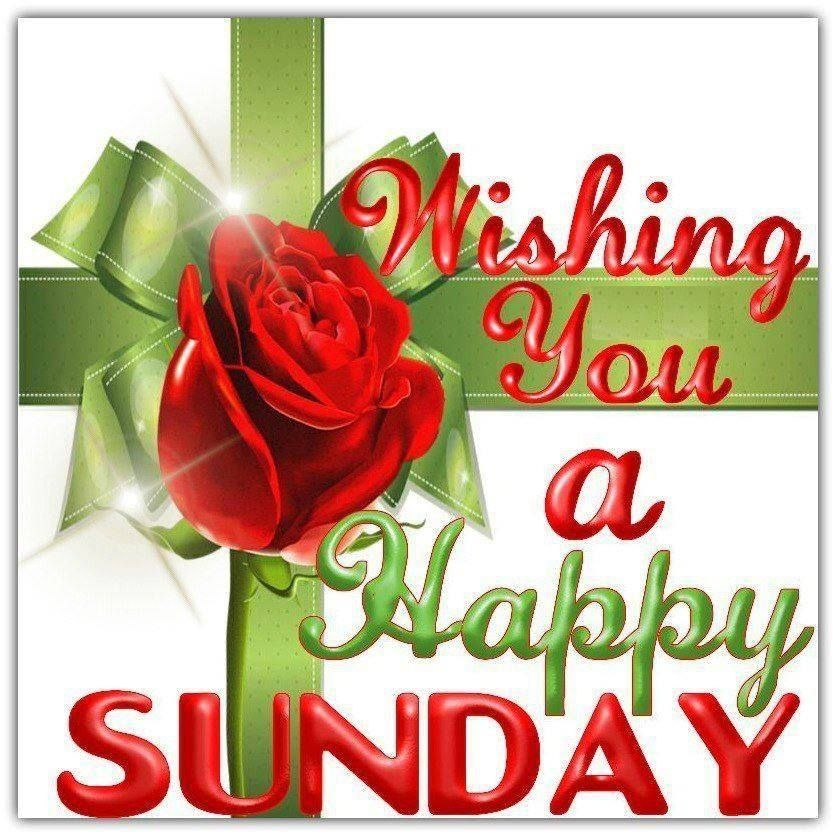 Wishing you a Happy Sunday love day flowers heart friend ...