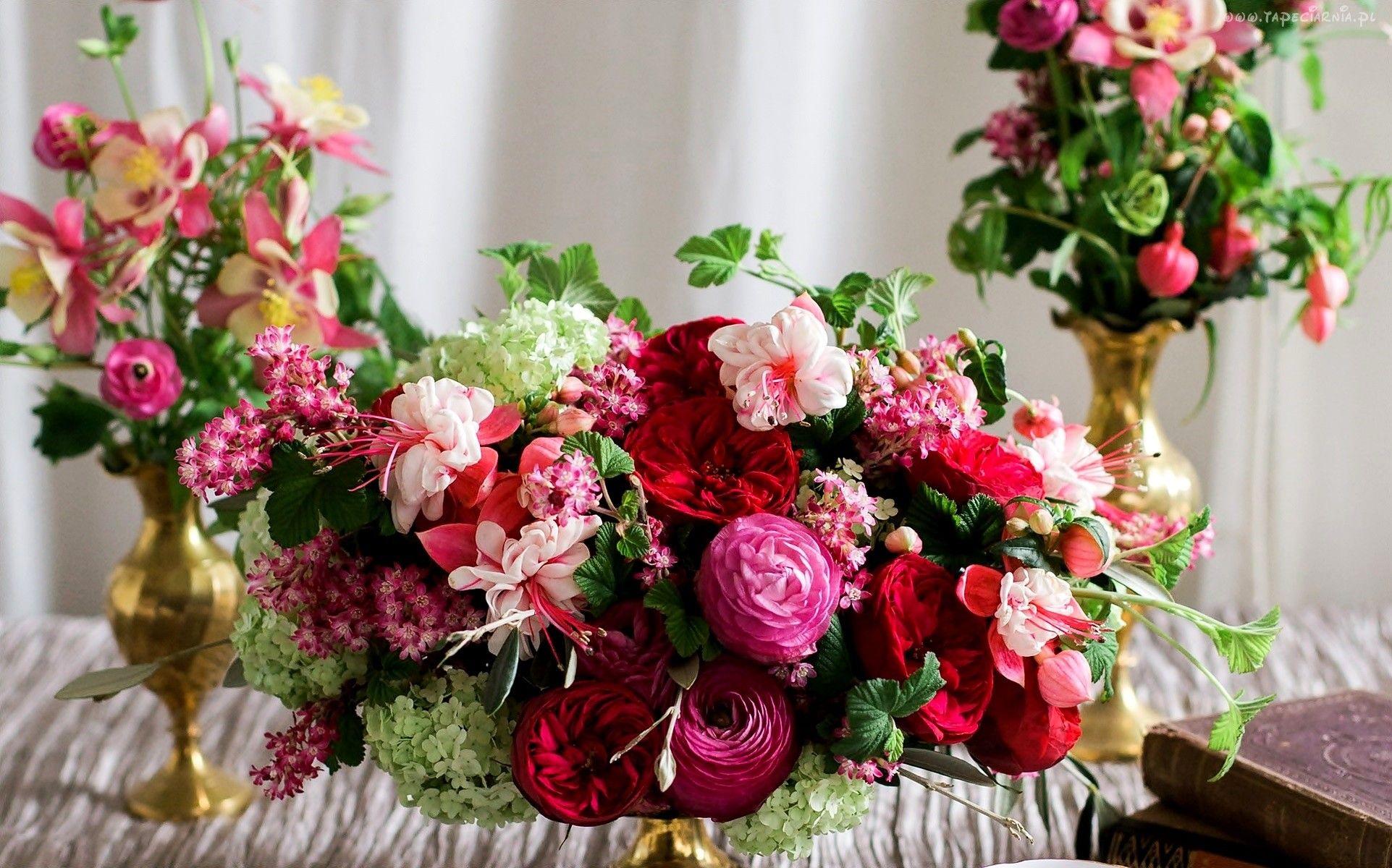 Jaskry Fuksje Roze Kolorowe Bukiety Kwiatow Fotos De Flores Rosas Flores