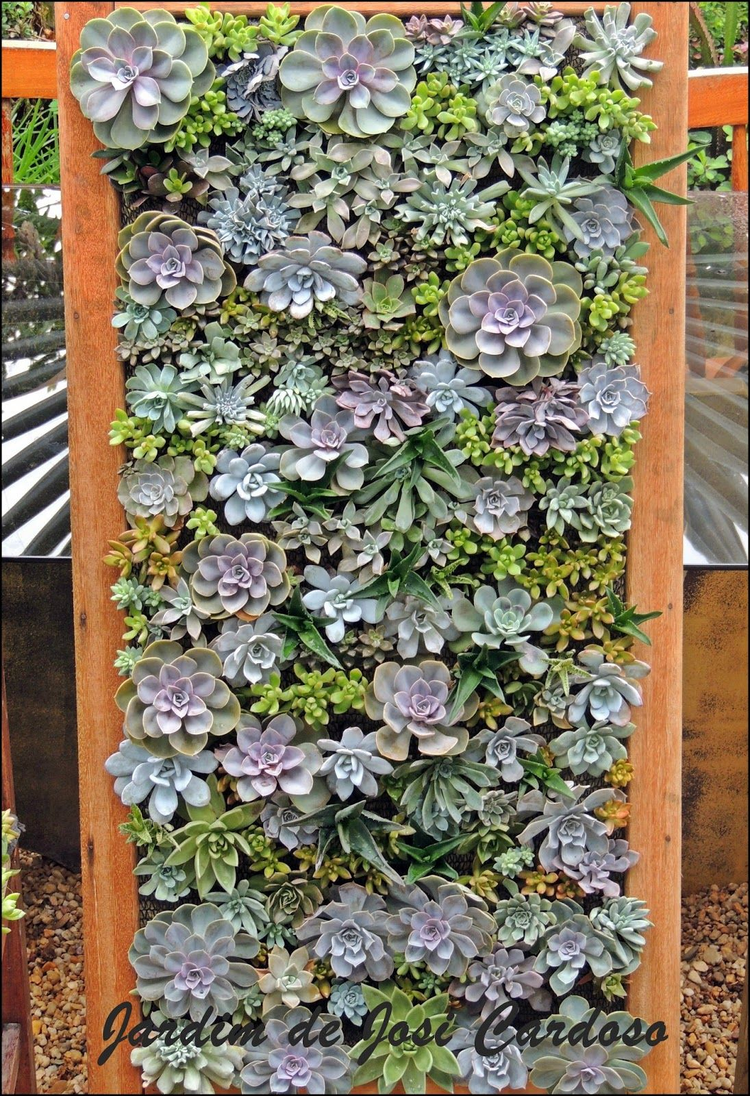 Cactus & Succulent Garden By Josi Cardoso: How To Build A