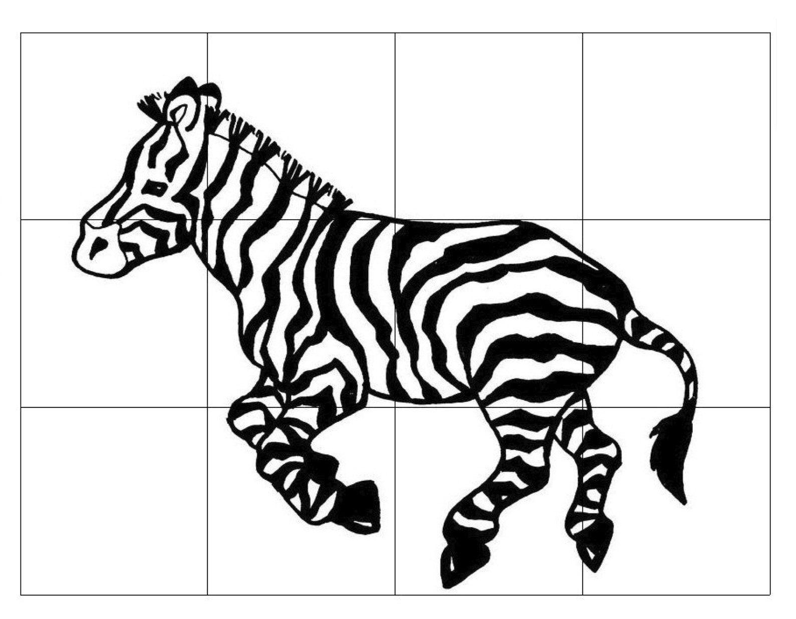 Zebra Puzzle For Kids Dierentuin Dierentuindieren De Dierentuin