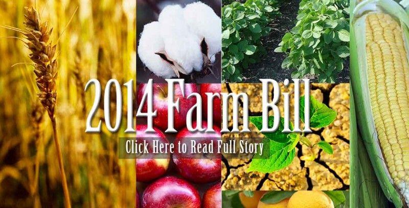 Farm Bill Reduces the Deficit, Boosts Crop Insurance