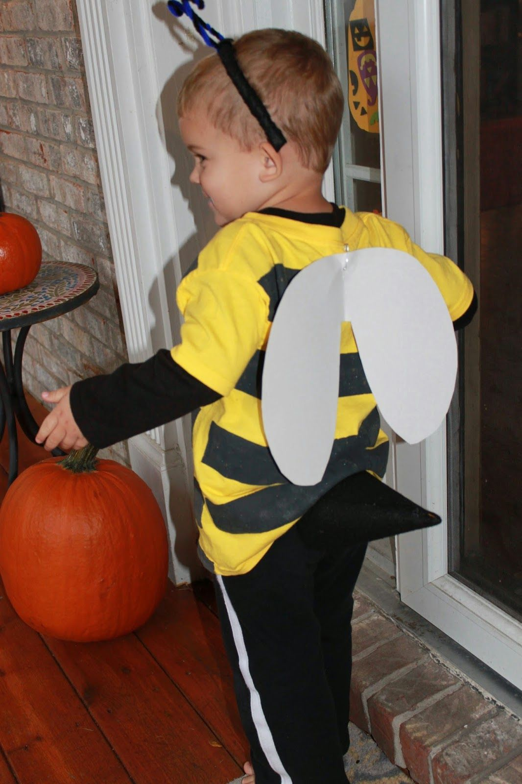 Coolest Homemade Insect Costume Ideas | Praying mantis, Insects ...