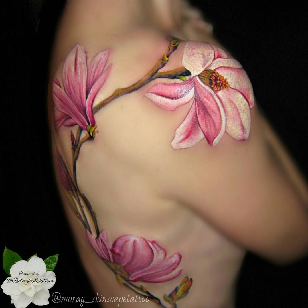 Beautiful Botanical Tattoos By Salem Witch Descendant: Beautiful Magnolia Branches And Blossoms Tattoo. @morag