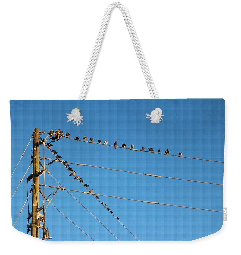 Flock Of Birds Weekender Tote Bag featuring the photograph Power Line Birds by Cynthia Guinn