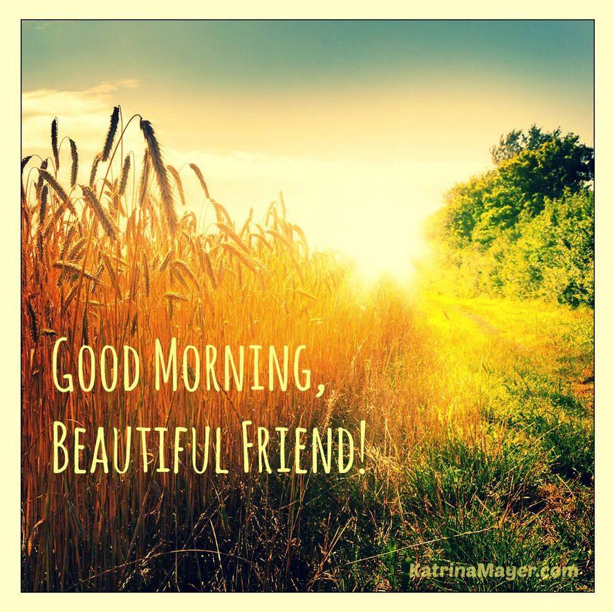Good Morning Beautiful Friend Good Morning Sunshine Good