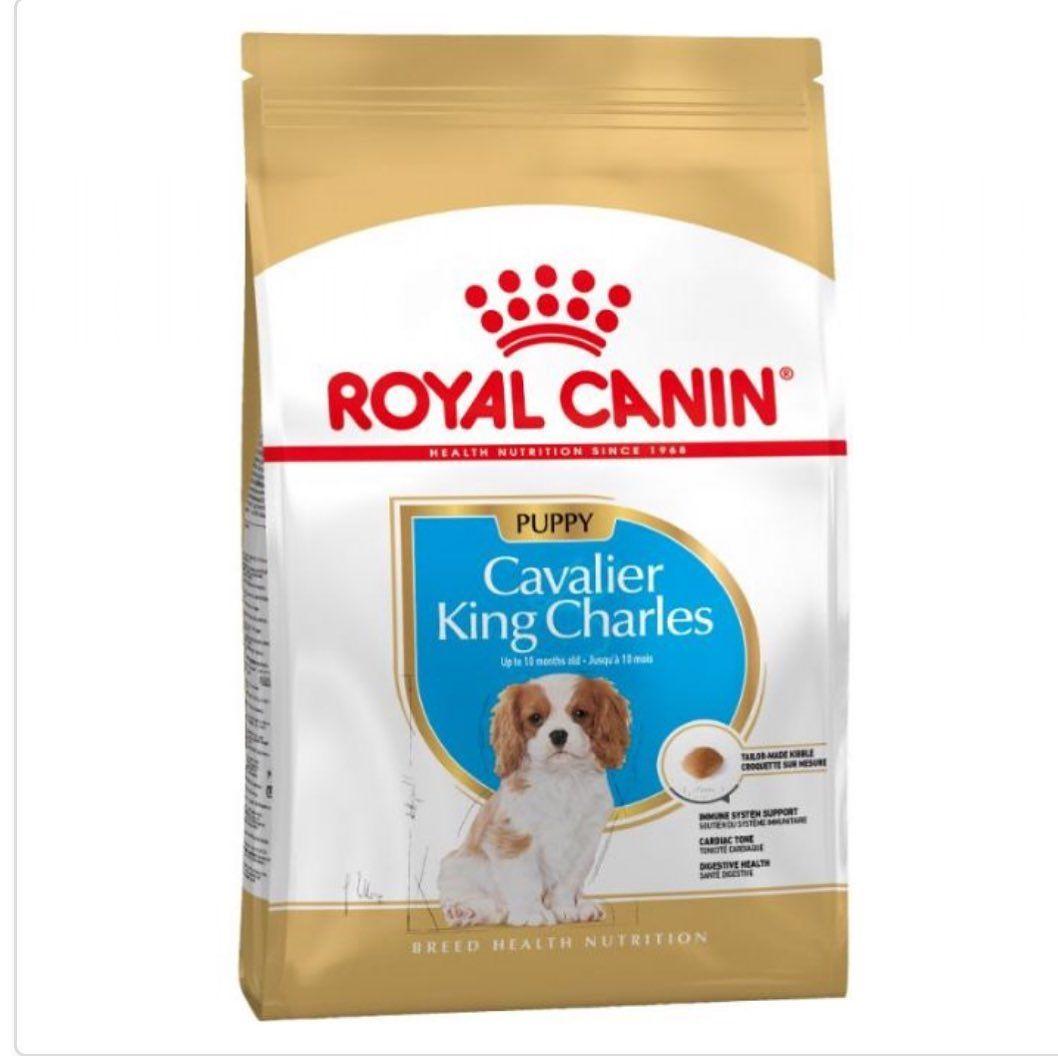 Royal Canin Puppy Cavalier King Charles 15kg Kedimamasi