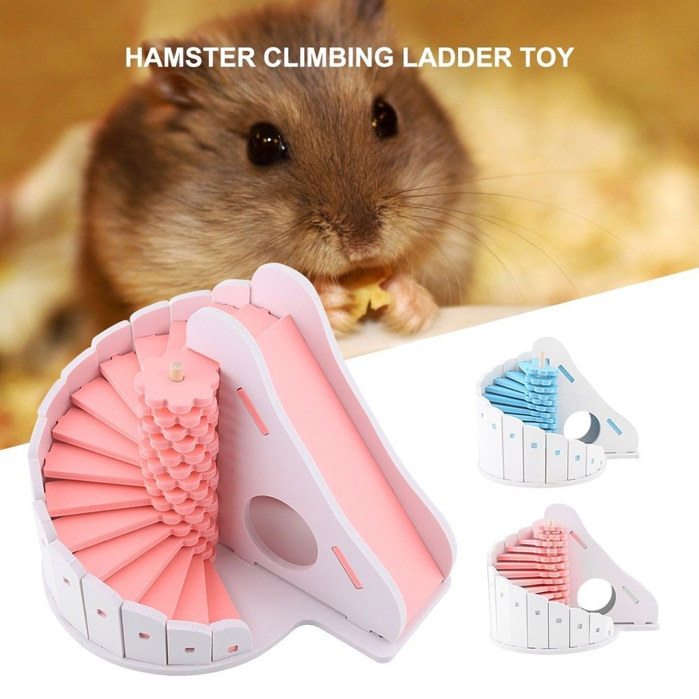 With Heightened Spiral Stairs Slide And Holes Your Hamster Can Play Exercise And Sleep 1 Set Of Hamster Climbing Ladder Toy Easy To Instal Tvarini