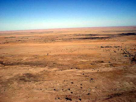 desert-2.jpg (450×338)