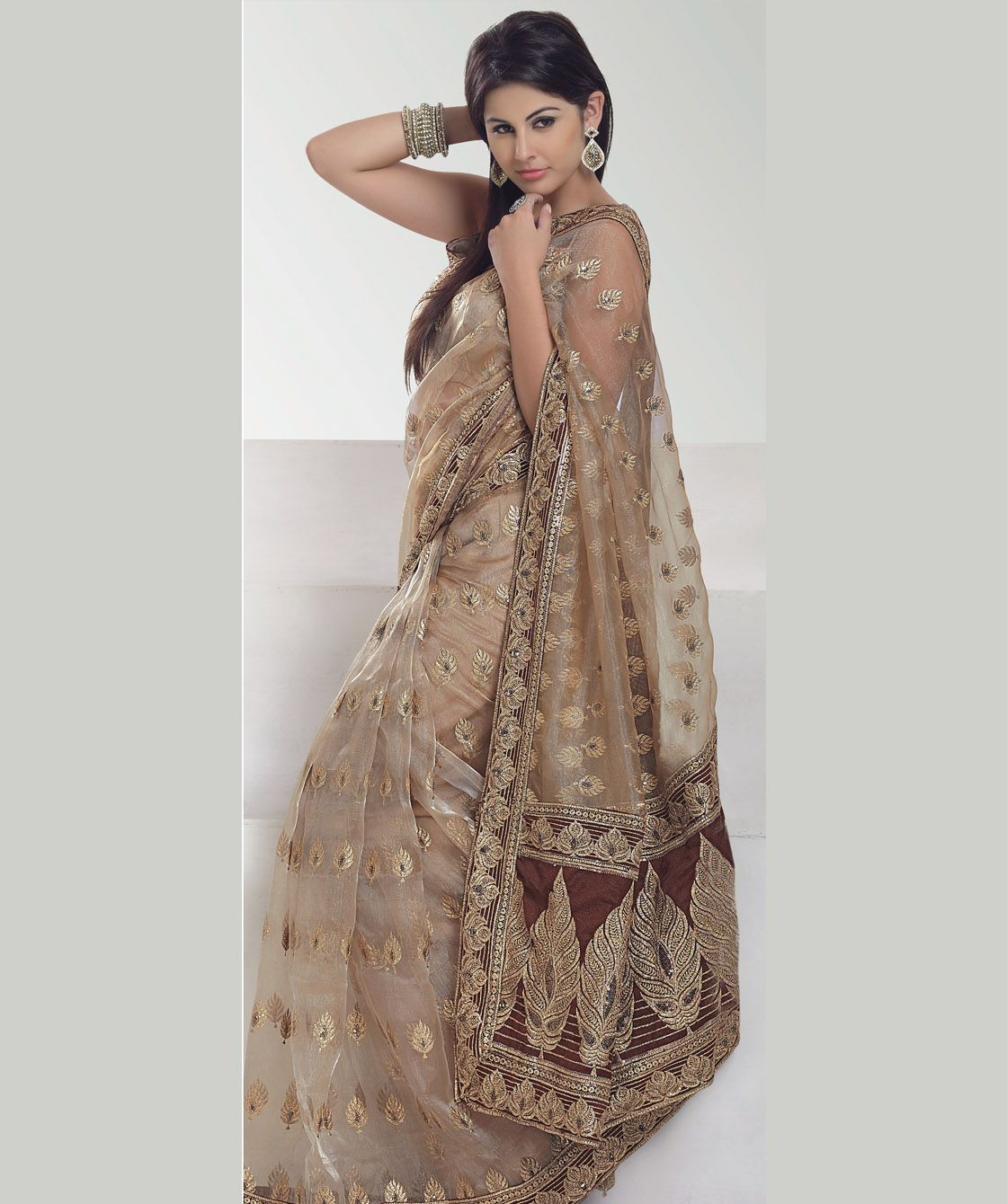 Zari and sequin work light brown brown colored net saree indian