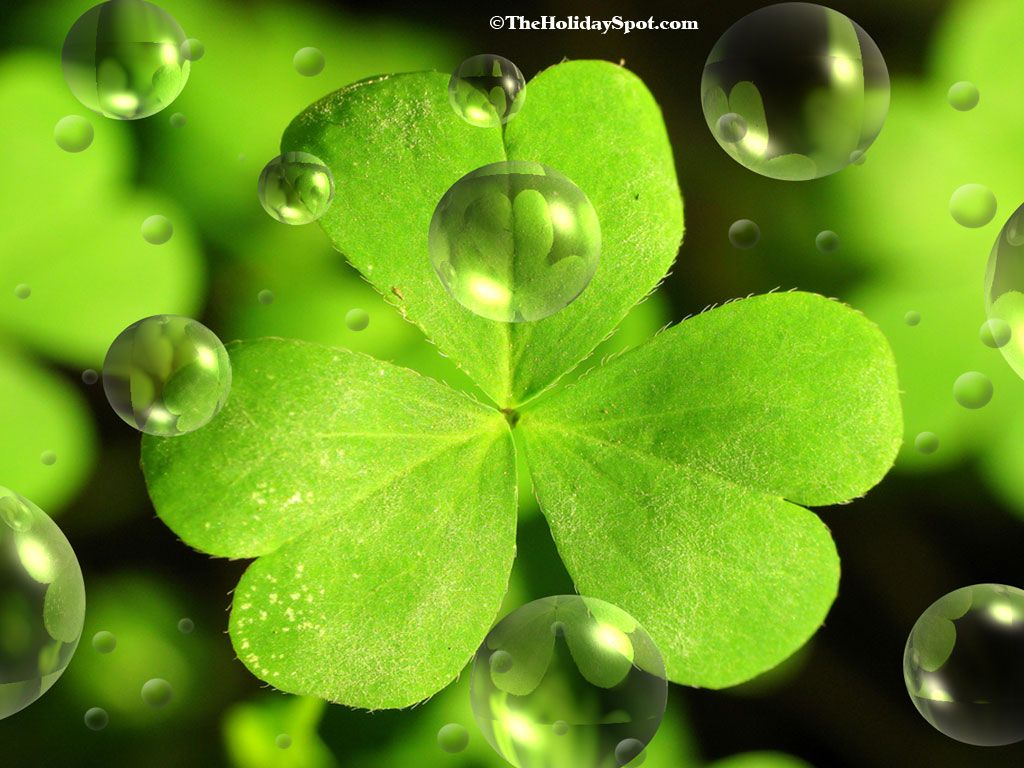 St Patricks Day Backgrounds Free Vector 43 706