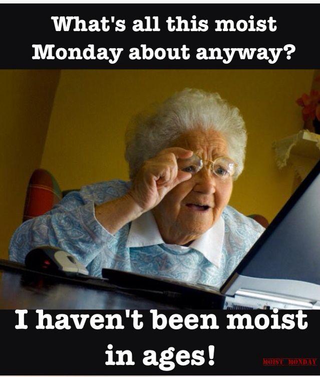 5336283760fda0474609f80fc0765d31 moist monday meme moist monday memes pinterest meme, monday