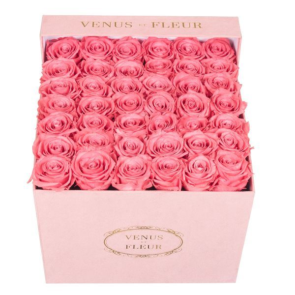 a sueded box of roses from venus et fleur.   flowers