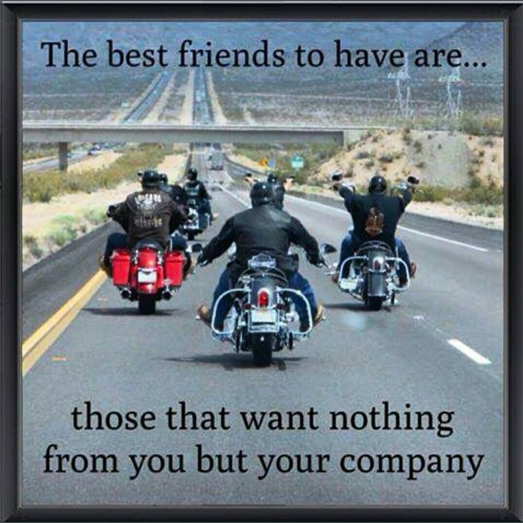 The best friends to have. | Motorcycle quotes | Biker ...