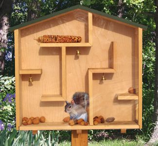 Nuts To Them! 8 Brilliant Backyard Squirrel Feeders | Wood plans ...