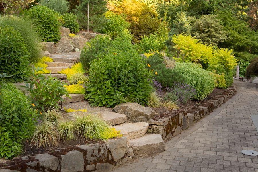 Landscape East  West\u0027s garden design and plant selection services