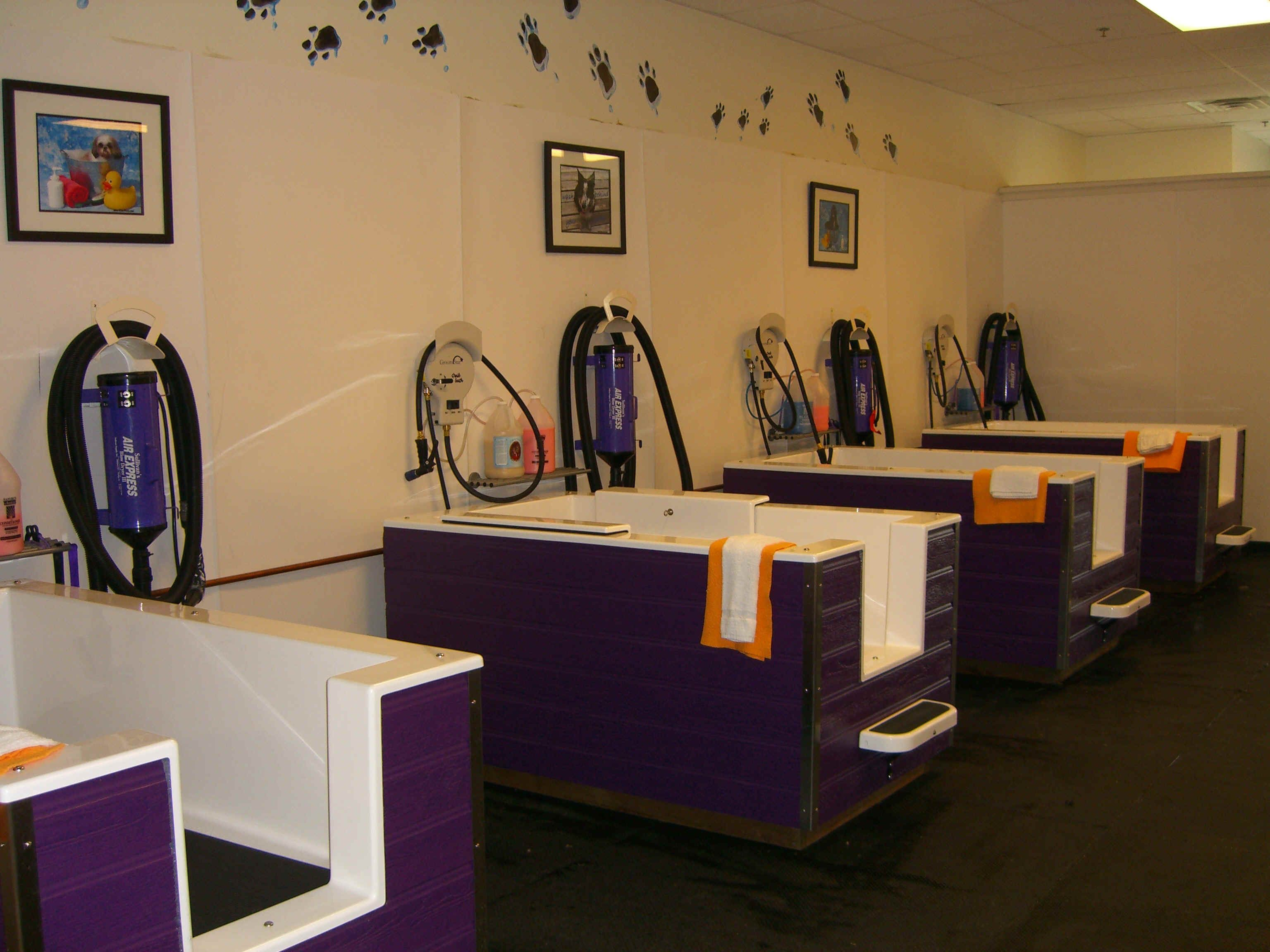 Grooming salon ideas google images love the walk around for A bath and a biscuit grooming salon