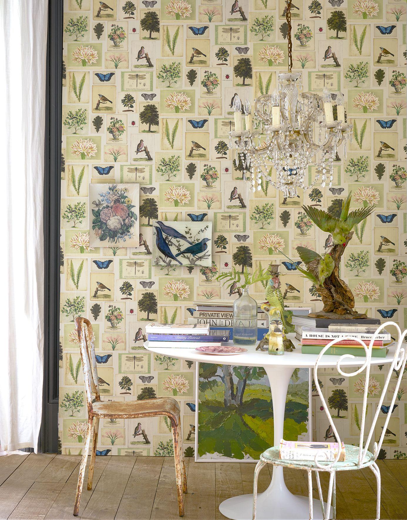 New John Derian Wallpaper For Designers Guild Designers