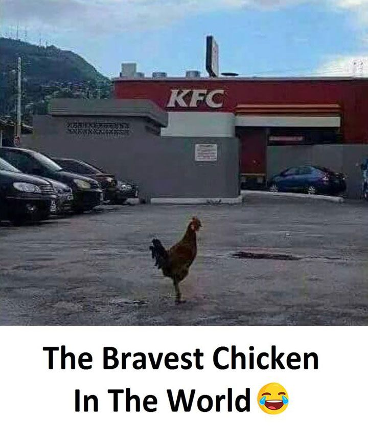Justviral Net Find Viral Images Online Humor Funny Pictures Funny