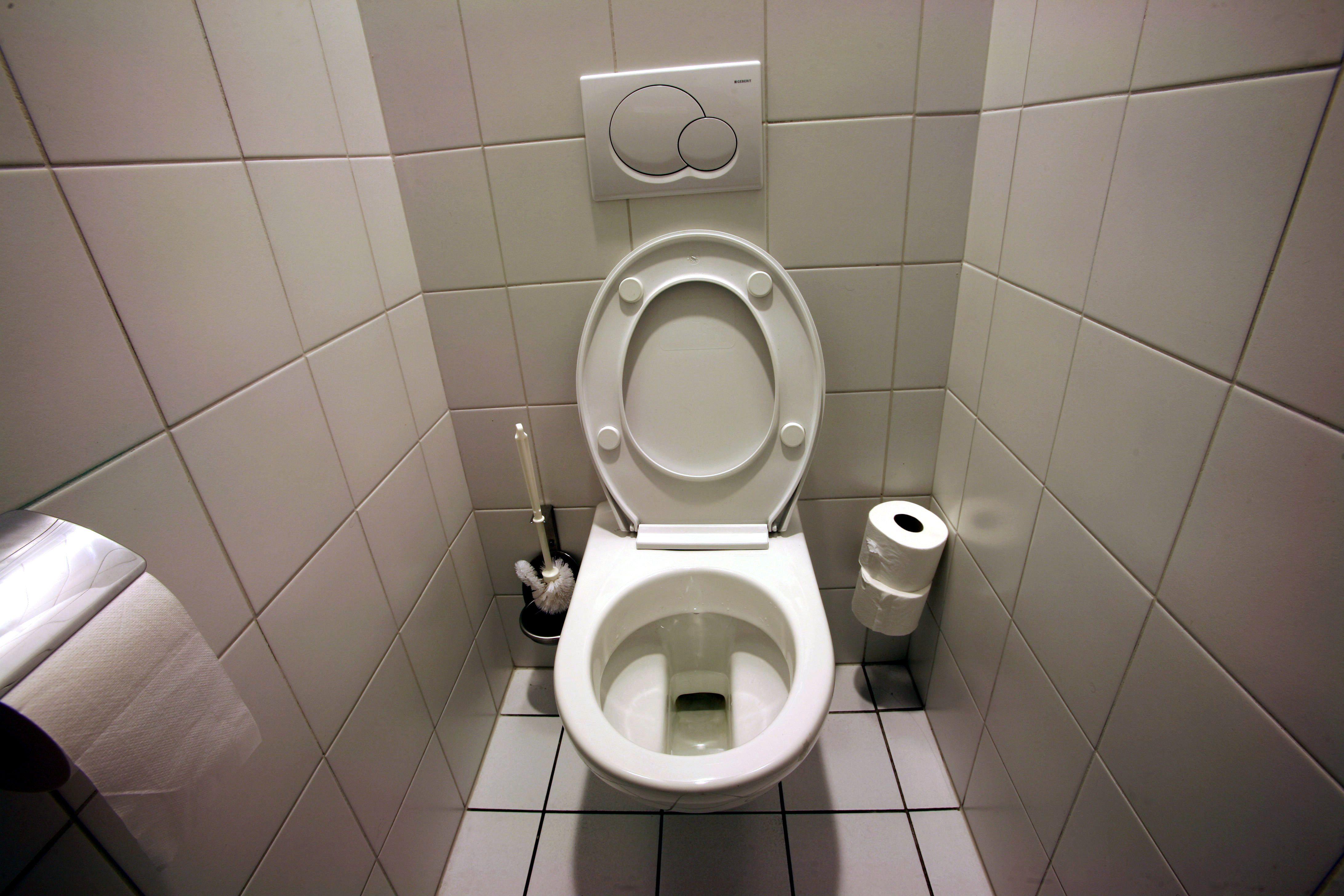 Fabriquez un spray d sodorisant naturel pour vos toilettes id es pour la maison toilet spray - Desodorisant naturel pour maison ...