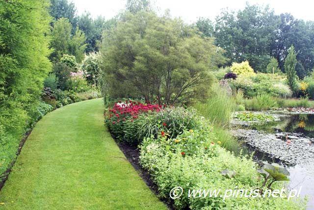 Drzewa I Krzewy Ozdobne Ogrody Rosliny Kwiaty Ogrodowe Iglaki Byliny Sprzedaz I Doradztwo Outdoor Decor Outdoor Sidewalk