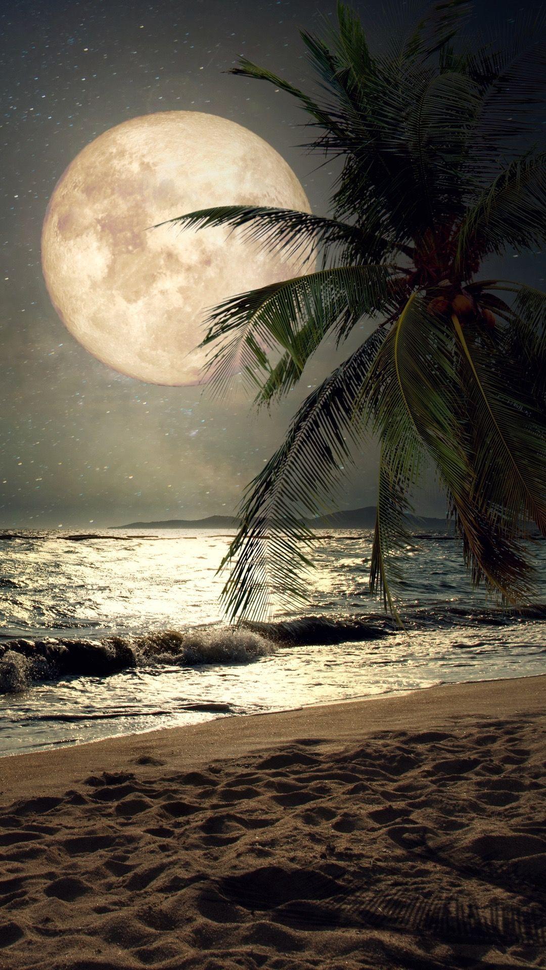 Such A Lovely Beach Night Wallpaper For Your Iphone X From Everpix Pintura De Lua Fotos De Paisagem Fotos De Paisagens Naturais