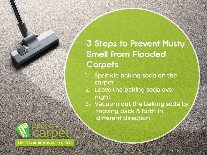 3 Steps to Prevent Musty Smell from Flooded Carpets -  Sprinkle baking  soda on the