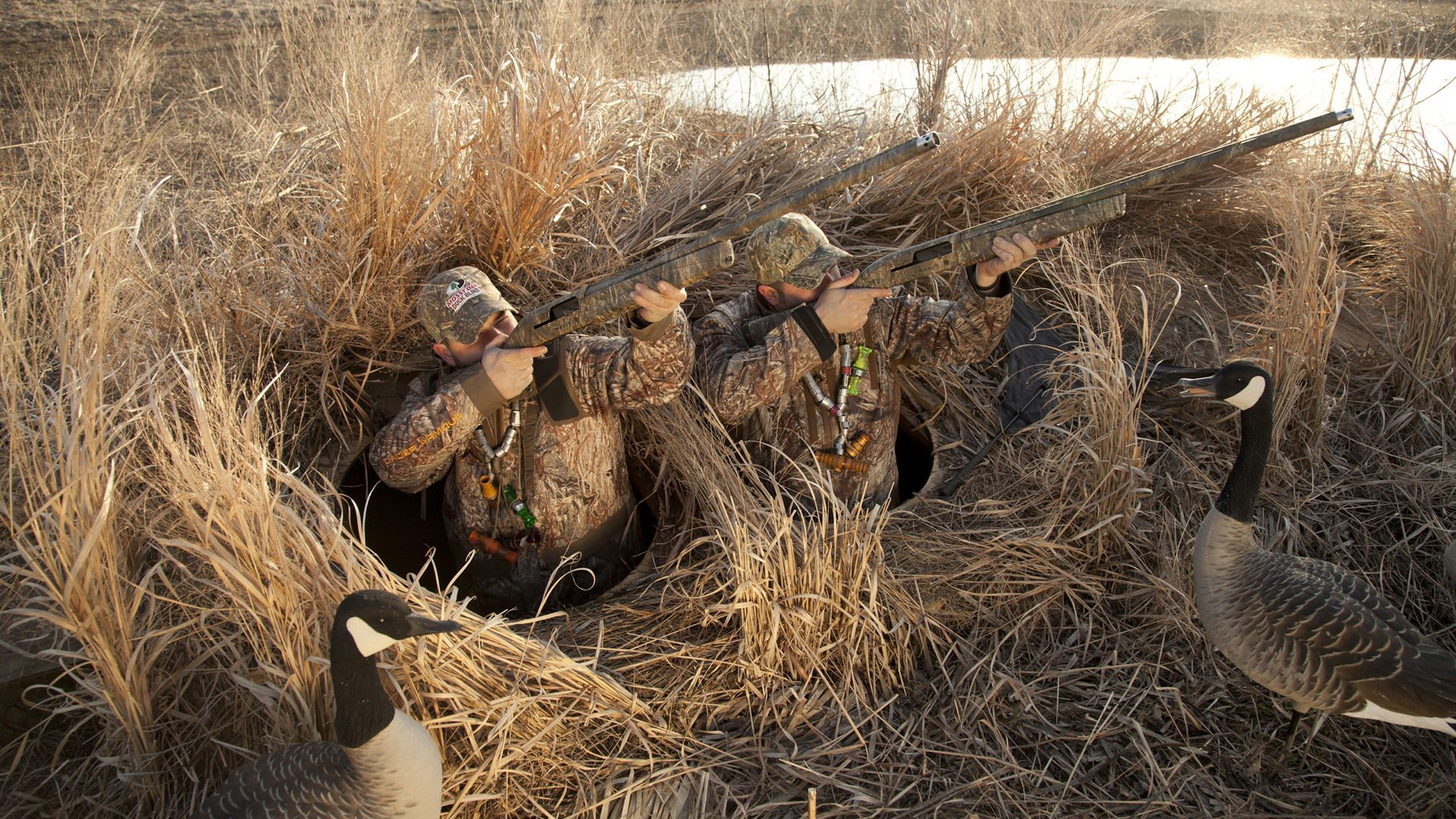 Duck Blind Photos With Its Unique Blend Of Camouflage
