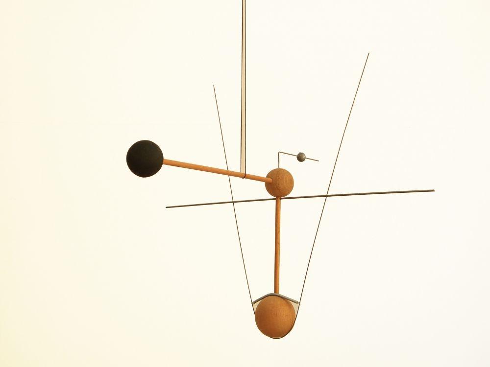 Carlos Bevilacqua - Hummingbird, 2011