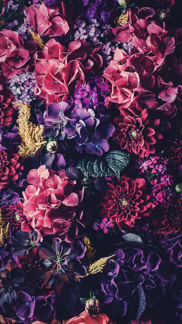 5 Floral iPhone Wallpapers To Celebrate 65k Pinterest Followers #iphonewallpaper