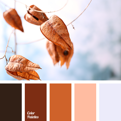 autumn colors, brown color, color matching, color solution for autumn, color solution for design, dark brown color, dark-orange color, gray color