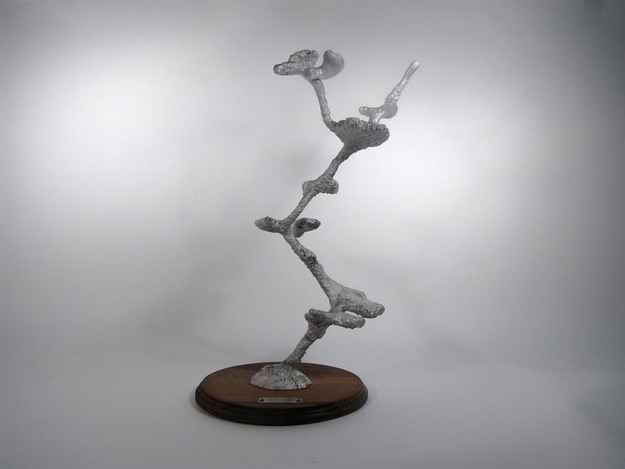 #031 - Aluminum Carpenter Ant Colony Casting