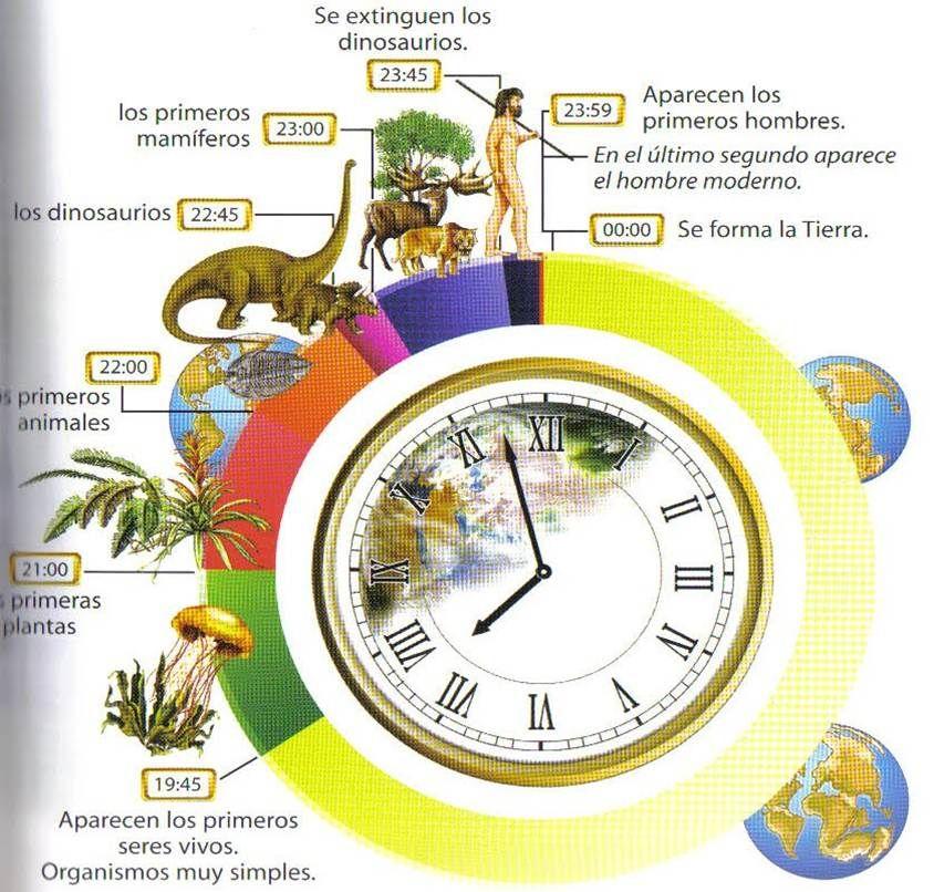 El Reloj De La Tierra Origen De La Tierra Ciencias De La Tierra Evolucion De La Vida