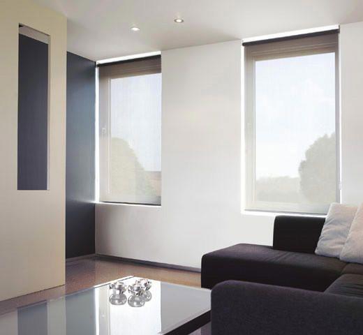 Transparant rolgordijn in woonkamer | interieur | rolgordijn ...