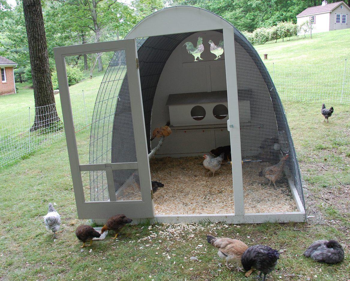 Egg shaped hoop coop hoop house chickens chickens
