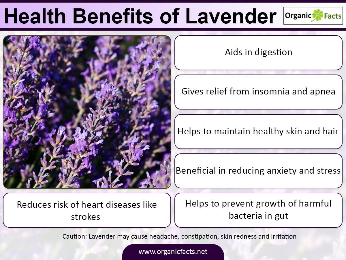 Some Of The Most Important Health Benefits Of Lavender Include Its Ability To Relieve Stress Impr Lavender Benefits Improve Heart Health How To Relieve Stress