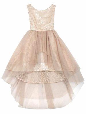 8cbd9f81b39 Rare Editions Champagne High Low Lace   Glitter Dress