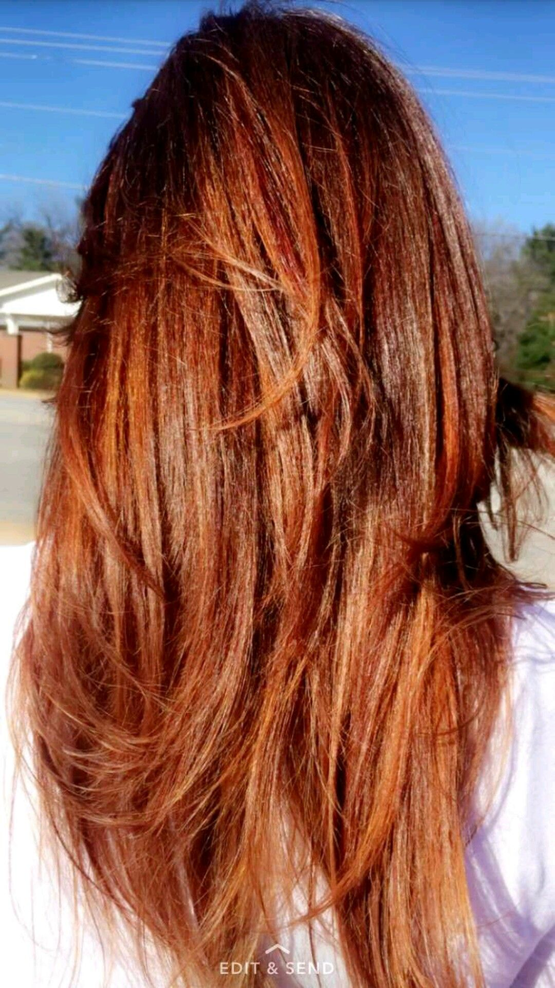 Auburn hair with copper highlights