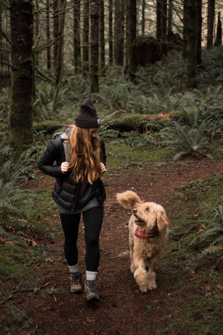 Just A Girl And Her Goldendoodle Pup Seattle Wa Pacific