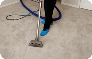Lacey S The Carpet Master Carpeting South Burlington Vt Carpet Cleaning Company Carpet Cleaning Hacks How To Clean Carpet