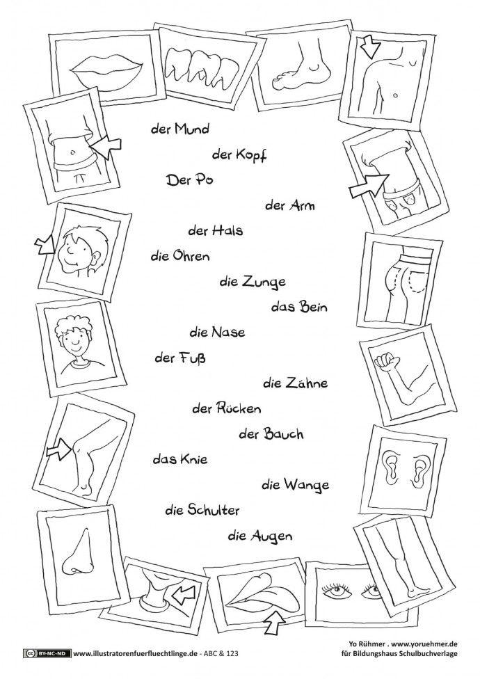ABC und 123 - Körperteile - Rühmer | deutsch | Pinterest ...