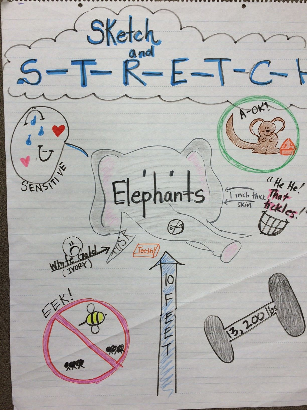 Sketch To Stretch Anchor Chart Content Literacy