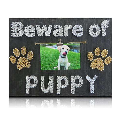 Puppy picture frame kit cool dog obedience tips pinterest puppy picture frame kit solutioingenieria Choice Image
