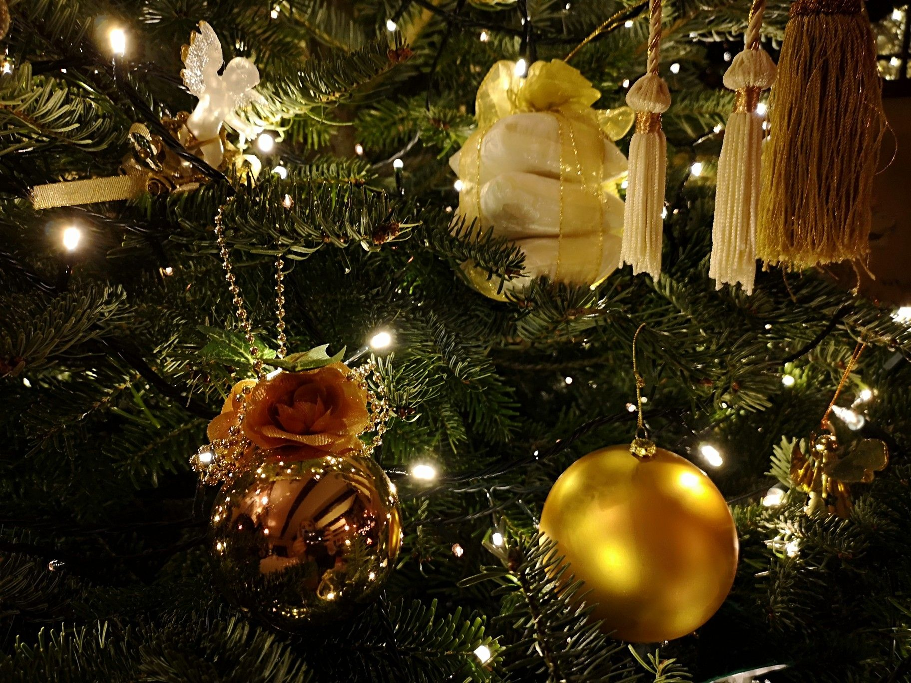 Pin by Daisy Cheer on Christmas Decorations