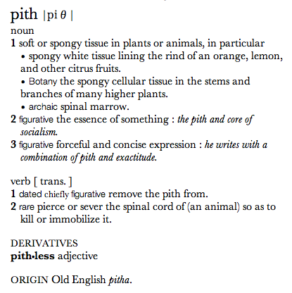 Pith Definition   Bing Images