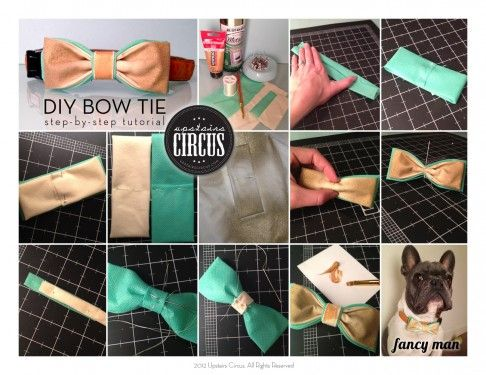 Diy Tutorial Fancy Man And Dog Bow Tie Upstairs Circus