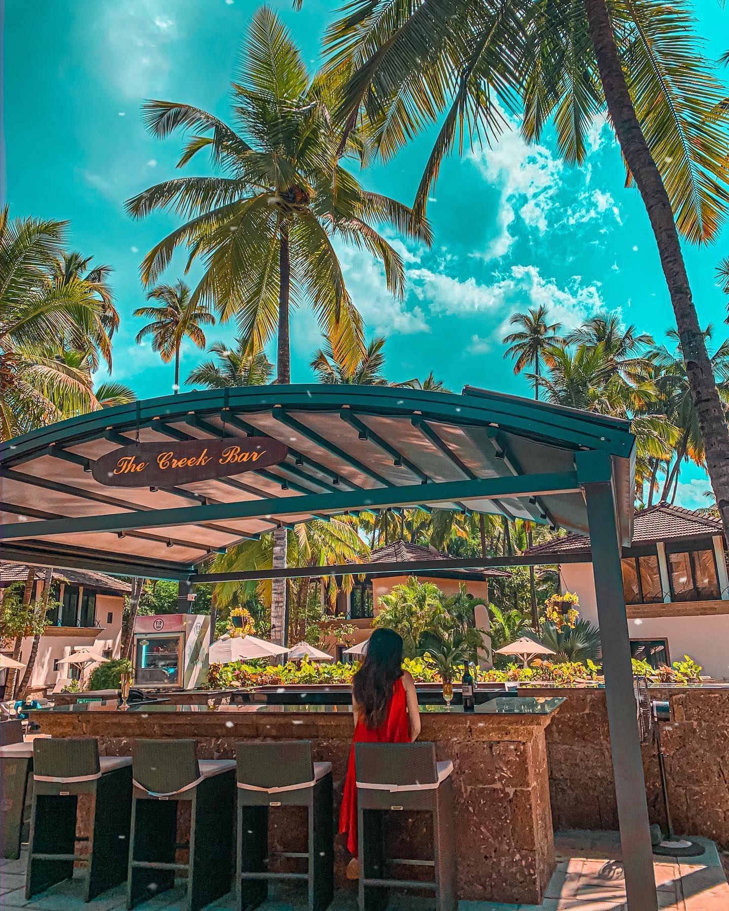 Tropical state of mind ☀️🌴🌸 #throwback🔙 . Coconut Creek Resort, Goa 📍 #traveldiaries #travelblogger #goavacation #apytravels  #photooftheday #wanderlust #beautiful #vacay #landscape #cactus #goablogger #india #incredibleindia #goalife #travelphotography #travelindia  #wanderlust #holiday #goaindia #indiantourism #goan #goatourism #goalife #pickmygoapic