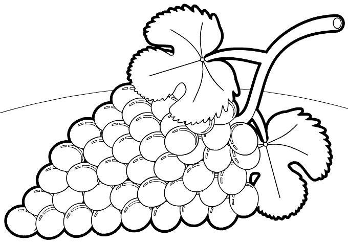Dibujos De Frutas Y Verduras Para Colorear Betiana 1 Veb