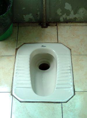 Bathroom christmas peeing potty squat squatting toilet