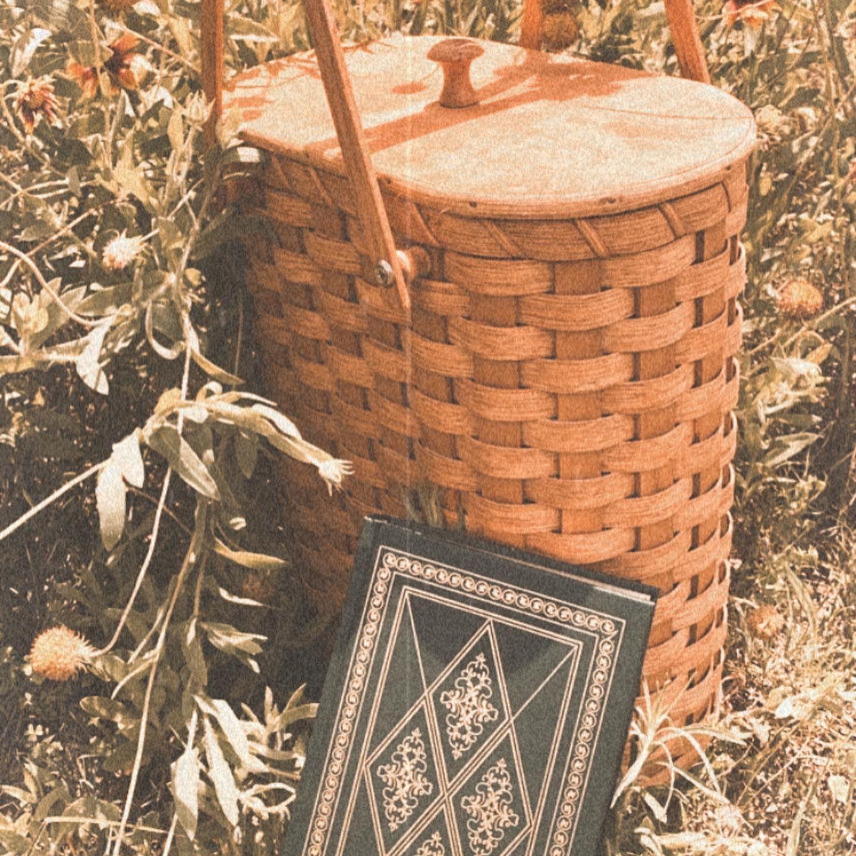 #huckleberry #huckleberryfin #books #basket #intothewoods #antique #antiques  #vintage #vintageinspired